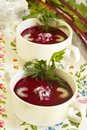 Summer Cold Beet Soup Stock Photography - 14848412