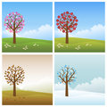 Four Seasons Backgrounds Royalty Free Stock Photos - 14919628