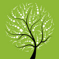 Art Tree Beautiful For Your Design Royalty Free Stock Photo - 14943735