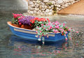 Flower Bed Stock Images - 14945174