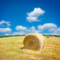 Field In Late Summer Royalty Free Stock Photos - 14969548