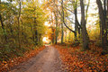 Autumn Scenery Royalty Free Stock Photos - 1505088