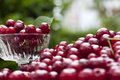 Cherries In A Glass Bowl With Leaves Stock Image - 15022181