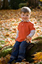 Young Boy Smiling Royalty Free Stock Photography - 15027307