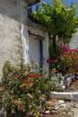 Door And Flowers. Royalty Free Stock Photo - 15039855
