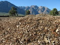 Woodchips And Mountains Stock Image - 15063951
