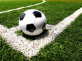 Soccer Ball Royalty Free Stock Images - 15064679