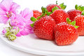 Strawberry On A Plate Decorated With Malva Flowers Royalty Free Stock Photo - 15075325