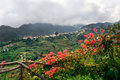 Village On The North Coast Of Madeira Island Royalty Free Stock Images - 15075949