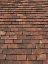 Roof Tiles Royalty Free Stock Images - 15080889