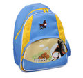 The Backpack Stock Photo - 15105030