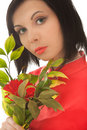 Woman Holding Red Gerbera Stock Photography - 15112962