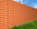 The Brick Wall On The Grass. Stock Photo - 15116690