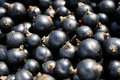 Black Currants Royalty Free Stock Photography - 15140237