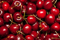 Cherries Royalty Free Stock Photography - 15150377