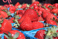 Baskets Of Ripe Strawberries Royalty Free Stock Photo - 15161925