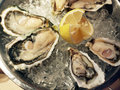 Oysters Stock Image - 15190791