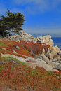 Landscape Of Monterey 17 Mile Drive, California Stock Photos - 15218343