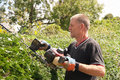 Skilled Workman Cutting Hedges Stock Photography - 15224632