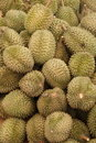 Durians 2 Stock Image - 15274901