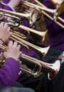 Trumpet Player S Royalty Free Stock Photo - 15279005