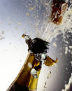 Champagne Bottle Royalty Free Stock Photography - 15301117