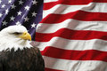 American Flag With Eagle Royalty Free Stock Photography - 15312717