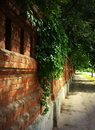 Stone Wall Of The Old Brick And Ivy Royalty Free Stock Image - 15356636