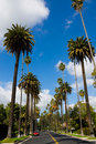 Beverly Hills Stock Image - 15389051