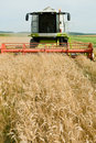 Harvesting Combine In The Wheat Stock Photo - 15423430