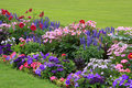 Flowerbed Stock Images - 15436604