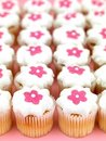 Cup Cakes Royalty Free Stock Photo - 15449925