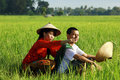Asian Farmer At Rice Field Royalty Free Stock Photography - 15480217
