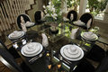 Luxurious Dining Room Stock Photos - 15517803