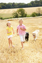 Children With Dogs Running Through Summer Harveste Stock Photos - 15552943