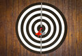 Dartboard On Wood Wall (Darts Hit Target) Stock Images - 15760634