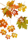 Red Autumn Leaf Royalty Free Stock Photos - 15793068