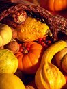 Thanksgiving Scene 4 Royalty Free Stock Images - 1589479