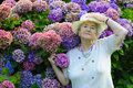 Old Woman With Flowers Royalty Free Stock Photo - 15818735