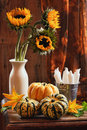 Sunflower & Gourds Still Life Royalty Free Stock Photography - 15847307