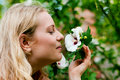 Woman In Garden Sniffing At Flowers Royalty Free Stock Images - 15873729