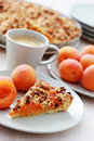 Apricot Tart Royalty Free Stock Images - 15873749