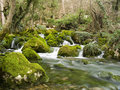 Falls On The Small Mountain River Stock Image - 1597781