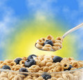 Bowl Of Oat Cereal With Blueberry And Spoon Stock Images - 15900494