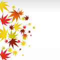 Autumn Leaves Royalty Free Stock Images - 16012339