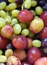 Plums And Grapes Royalty Free Stock Photo - 16024185