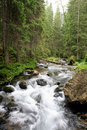 Mountain Stream Stock Images - 16124394