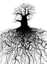 Tree With Roots Stock Photos - 16158333