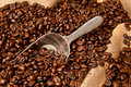 Coffee Beans In Burlap Sack With Scoop Royalty Free Stock Photography - 16171367