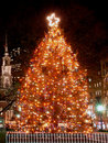 Boston S Christmas Tree Stock Photos - 1626543